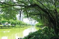 大雨中美舍河以包容的胸怀对汇聚的雨水进行滞蓄和净化,缓解城市道路积水。    见习记者 李天平 摄