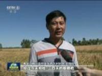 """丰年庆佳节  亿万农民喜迎""""中国农民丰收节"""""""