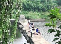 治污后的柳青河成为人们休闲玩耍的好去处