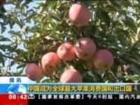 中国成为全球最大苹果消费国和出口国