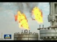 联播快讯:伊政府与库区就石油出口达成协议