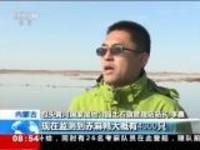 内蒙古:近万只候鸟飞抵黄河湿地公园