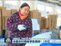 联播快讯:全国农村网络零售额超1.2万亿