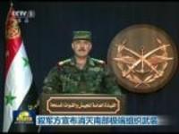 叙军方宣布消灭南部极端组织武装