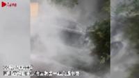 四川乐山一轿车冲向人行道致7死4伤 目击者称肇事司机受伤