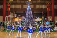 初心艺术培训学校为宾客带来梦幻的芭蕾舞蹈