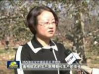 陕西:多措施推进苹果产业化升级