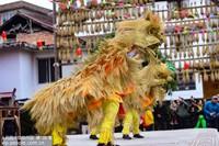 2月10日,在广西龙胜各族自治县平等镇广南村鼓楼前,侗族同胞在舞草狮。