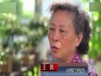 江苏苏州:老人义务为聋哑人做翻译  组建志愿队伍帮更多人