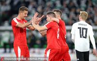 塞尔维亚队员庆祝进球
