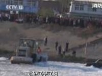 现场·辽宁辽阳:男子带孩子开车下河游玩  被困河中