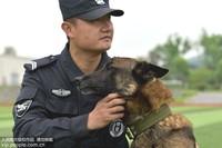 """5月6日,铜陵市公安局警犬基地内,警犬""""杰克""""和训导员张腾是一对亲密的""""战友""""。"""