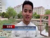 江苏淮阴:大学生承包校园景观湖养鱼  鱼养肥送食堂供师生食用