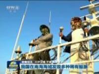 联播快讯:我国在南海海域发现多种稀有鲸豚