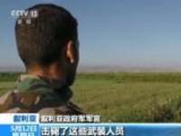 叙政府军继续推进  收复九个村庄