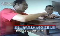 海南:黄花梨盗伐严重  当地林业监管成摆设