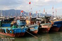 9月21日,连云港市连云区西连岛村渔业码头,许多渔船靠泊港湾躲避台风。