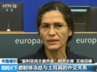 布鲁塞尔:土耳其对叙北部库武发动军事打击——叙库武呼吁欧洲采取实质行动