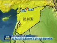 关注叙利亚北部局势:叙库武同意叙政府军进驻北部两地区