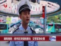 湖南湘西:闹市区突现脱缰马  交警紧急处置