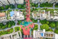 """中国为什么要建设""""海绵城市""""? 生态"""
