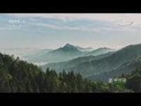 《美丽中国》 第三集:沃土如金