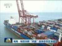 """海南:制度创新""""共振""""加快自贸区港建设"""