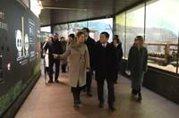 """中国驻俄大使张汉晖到莫斯科动物园看望中俄友谊""""使者""""大熊猫""""丁丁""""和""""如意"""""""