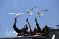 3月8日,市民在昆明海埂大坝给红嘴鸥喂食。