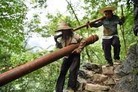 在广西大化瑶族自治县板升乡弄雷村,工人们抬着抗旱饮水工程的水管在山路上前行(2016年8月10日摄)。