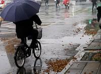 2020年3月26日,南京大风降温,春日清晨的街头满地落叶。雨田/ IC photo