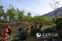 救援人员上山搜救被困游客。(徐涛/摄)