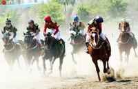 2020年5月2日,在新疆昌吉市一赛马场,骑手正在比赛中。