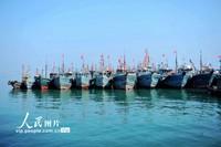 4月30日,山东青岛西海岸新区积米崖渔港,休渔的渔船停靠在码头。俞方平/人民图片