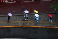 2020年5月8日早晨,北京海淀区世纪城下了一夜的小雨没有停歇,淅淅沥沥的小雨影响早高峰,温度也随之降低,外出市民应注意防雨保暖。牛云岗/IC photo