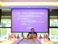 图为中国—东盟商务理事会在中国(青岛)—东盟经贸对接会上致辞