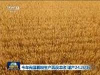 今年我国夏粮生产再获丰收 增产24.2亿斤