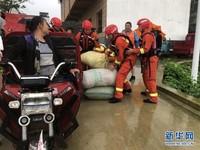 7月21日,在自由庄台水边,消防员帮村民将抢收的毛豆装袋(手机照片)。新华社记者 李亚彪 摄