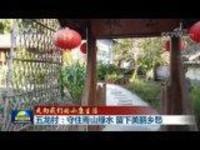 【走向我们的小康生活】五龙村:守住青山绿水 留下美丽乡愁