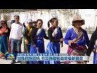 加强民族团结书写西藏和谐幸福新篇章