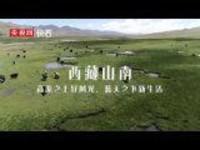【幸福花开新边疆】西藏山南:高原之上好风光,蓝天之下新生活