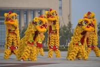 12月27日,在江西师范大学科学技术学院,龙狮队的队员们正在进行舞狮训练。