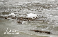 12月29日,辽宁省大连夏家河海滨浴场近海区出现结冰。