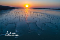 2021年1月8日,洪泽湖东岸湖面结冰。