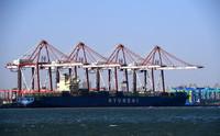 1月11日,一艘货轮停靠在天津港欧亚国际集装箱码头。