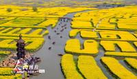 2021年3月28日,游客在江苏省兴化市千垛景区乘船观赏油菜花。