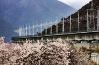 4月1日在西藏自治区林芝市拍摄的拉林铁路。