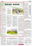 《人民日报》2021年4月6日11版 版面截图