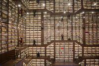2021年1月2日,读者在湖南省邵阳市一处图书馆内阅读书籍。新华社发(曾勇 摄)