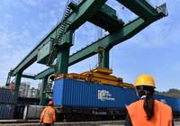 4月10日,在福建厦门海沧火车站,货运员在吊运中欧(厦门)班列X8208次货物列车货箱。